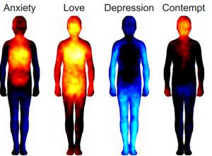 emotions_in_body