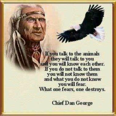 ChiefDanGeorge