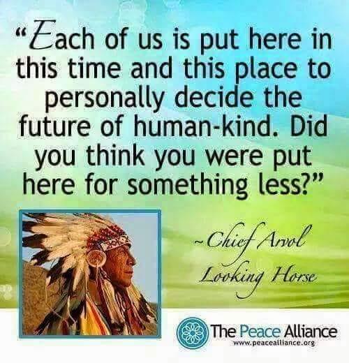 ChiefLookingHorseWeAreHereForAPurpose