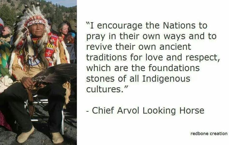 Chief Looking Horse All Nations