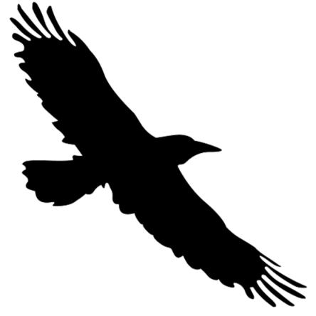 Bird Clan Messenger