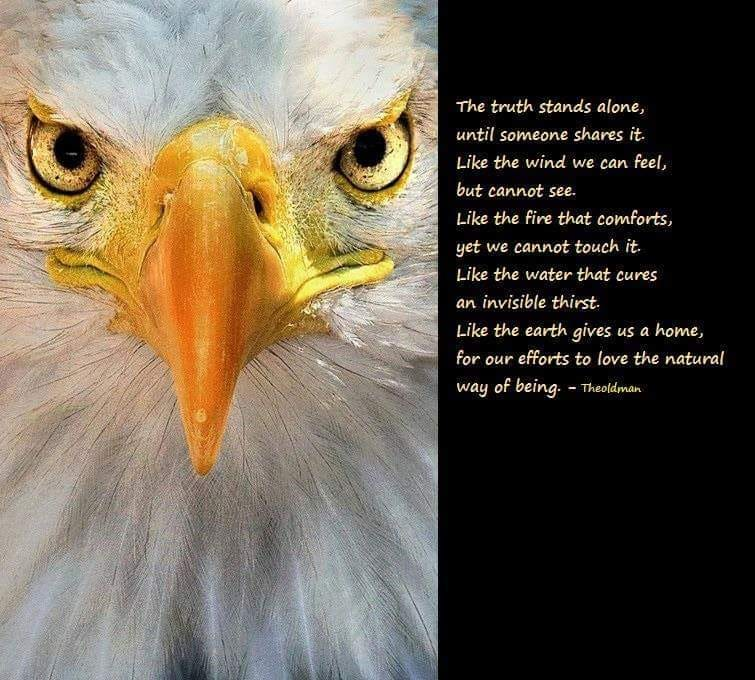 Eagle on Truth