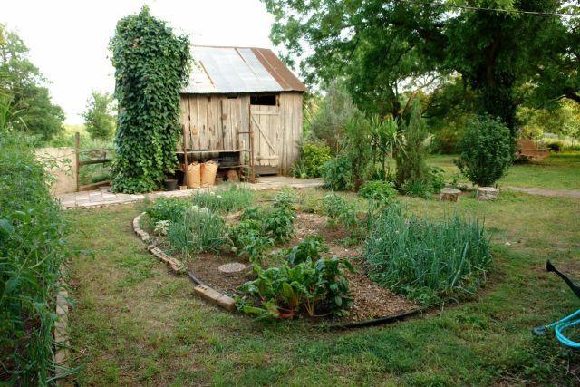 Vegetable.garden