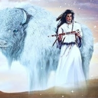Buffalo Medicine - Perseverance