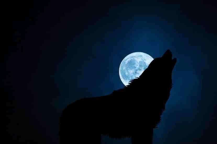 spiritual-awakening-signs-symptoms-dark-night-min