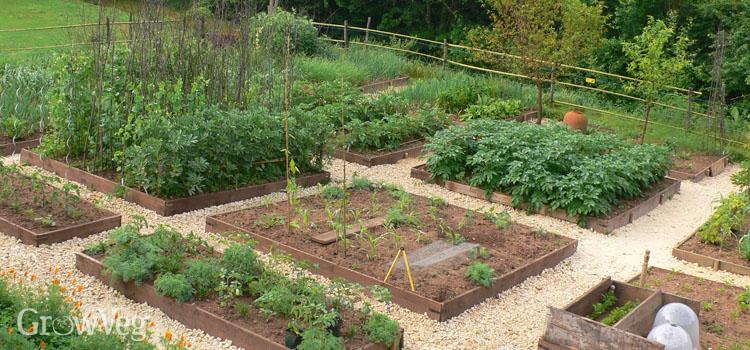 vegetable-garden-2x