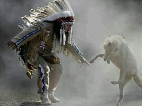 Wolf Dance