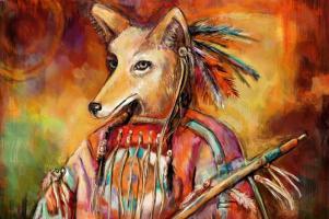 Coyote Medicine2