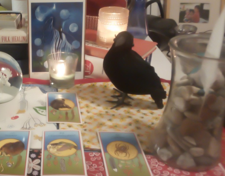 Hummingbird Medicine Card Reading (2)