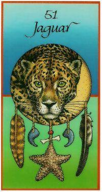 Jaguar Medicine Card
