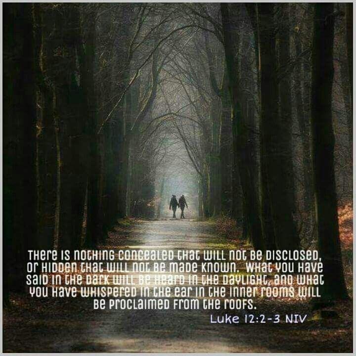 Luke 12 2-3