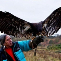 Eagle Medicine - Sacred Messengers of the Great Spirit