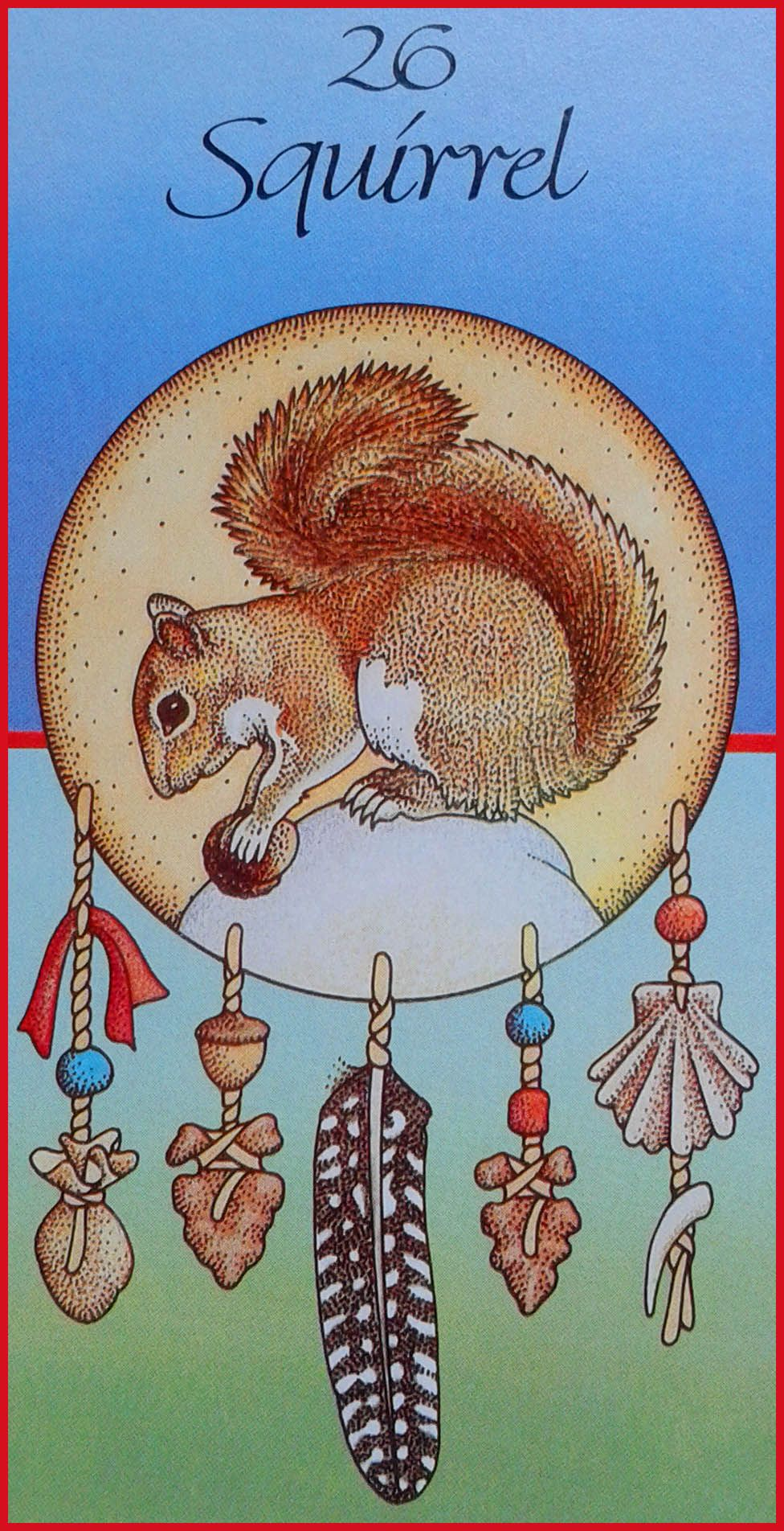 Squirrel Medicine Card