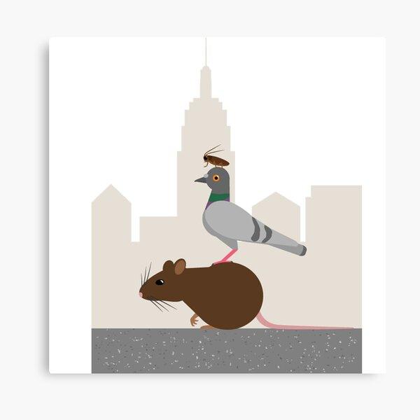 Rat Pigeon Bee Kathryn M Santos