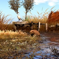 Beaver Medicine - Take the First Step
