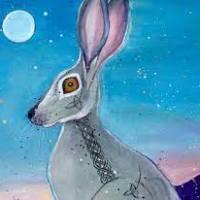 Rabbit Medicine - Rising Above Fear