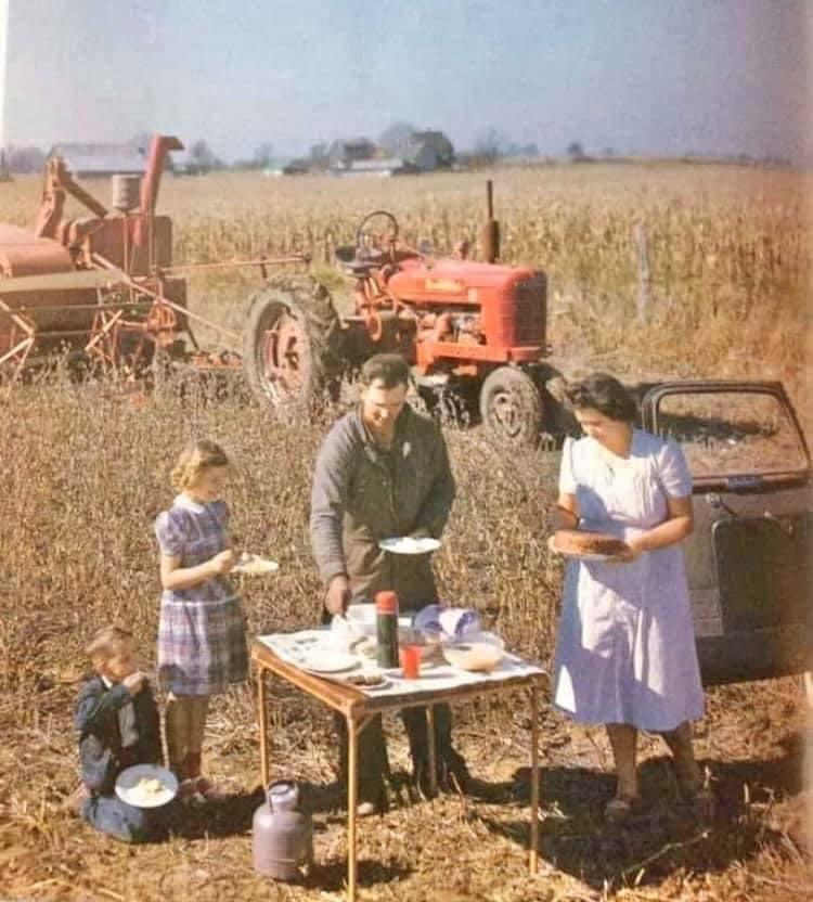 Grandparents picnic